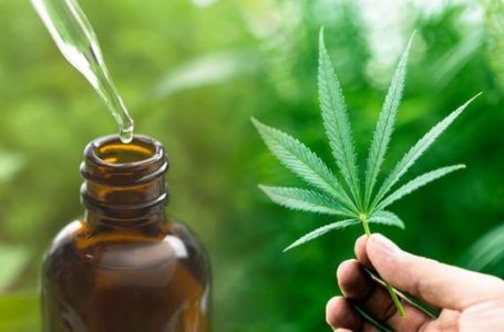 How CBD Products Are Beneficial In the Treatment of Skin Issues?