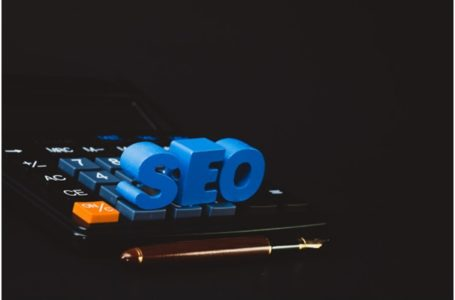 SEO Company in Mumbai- How to Choose