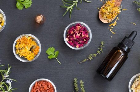What is the Difference between Cannabinoids and Terpenes?