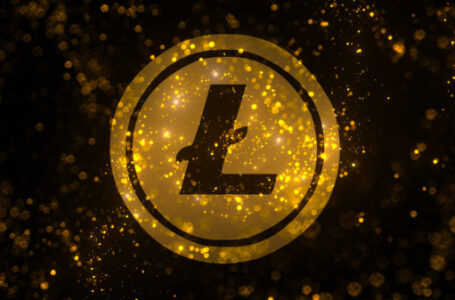 How the Litecoin investment becomes the generally preferred one?